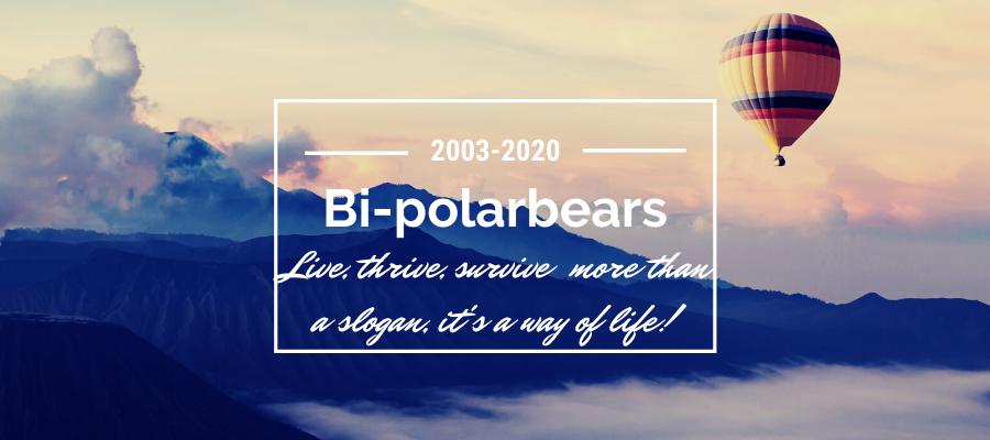 bi-polarbears 17 year banner